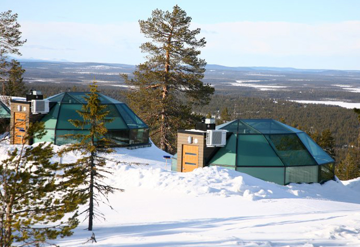 Golden Crown Levi Igloos