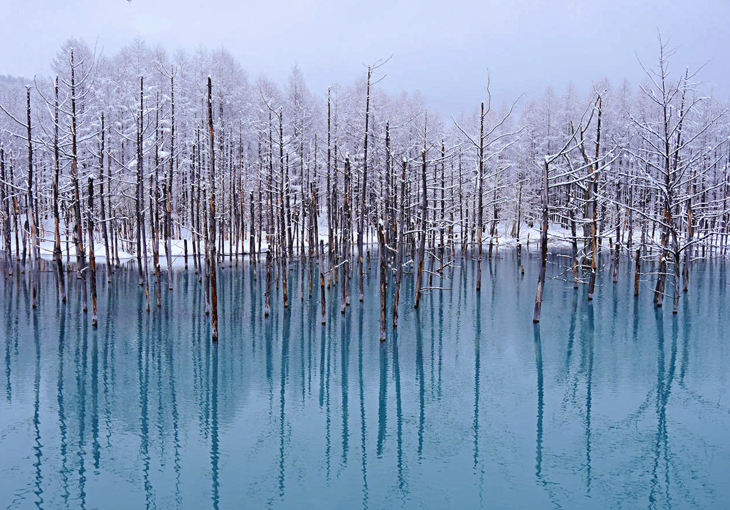 2018_스팟_비에이_겨울