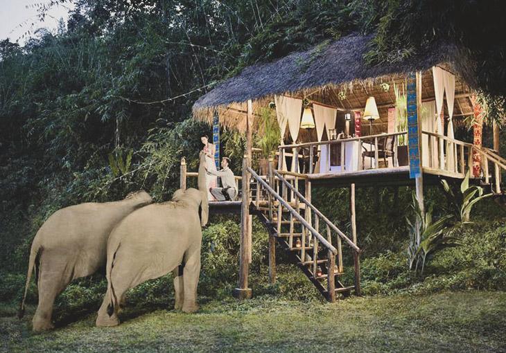 2019_스팟_아난타라 코끼리캠프