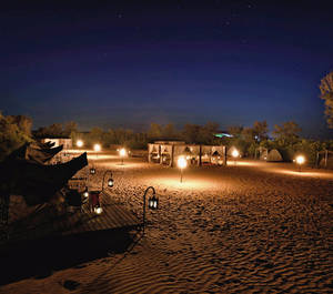 Overnight Safari in Dubai (Tent)